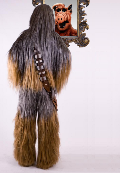 Chewbacca's reflection is ALF.