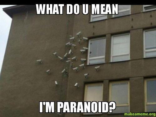 paranoid-video-cameras