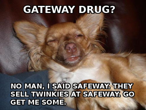 high-dog-safeway