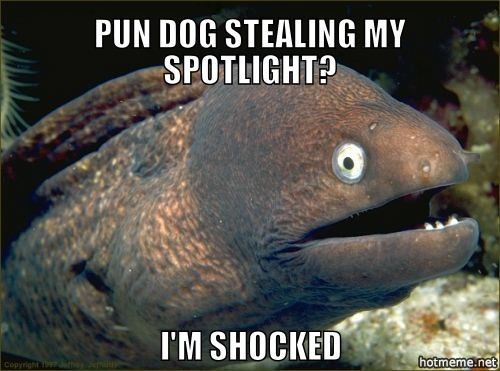 bad-joke-eel-shocked